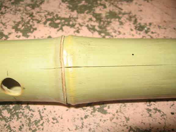 http://www.mujitsu.com/images/green.JPG