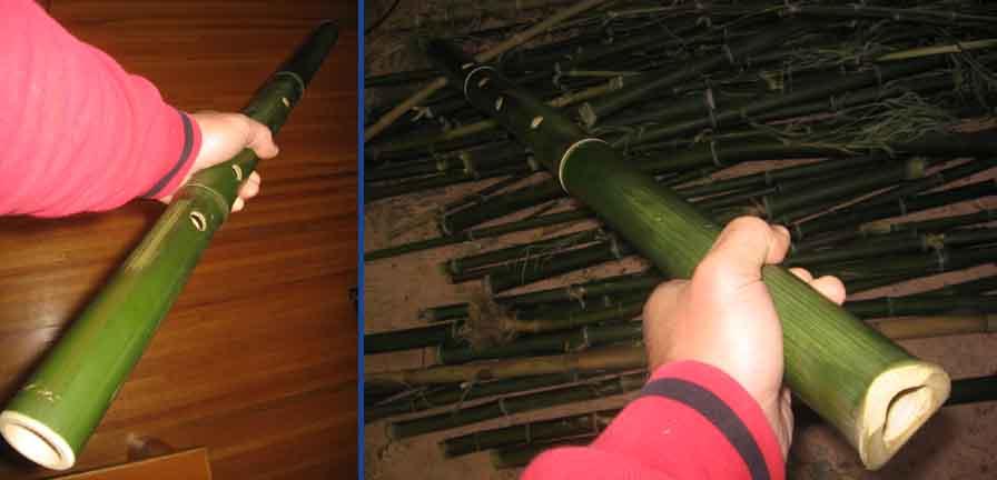 http://www.mujitsu.com/images/greenbamboo.jpg